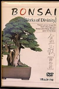 Bonsai-Works of Divinity